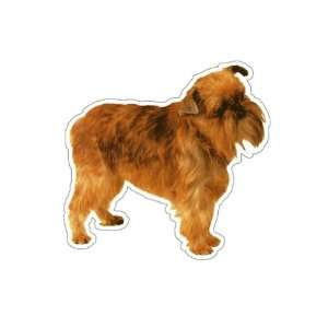 BRUSSELS GRIFFON   Dog Decal   sticker dogs car window