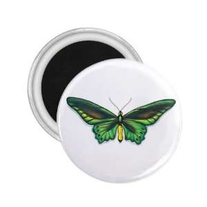 Tattoo Butterfly Art Fridge Souvenir Magnet 2.25 Free