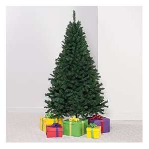 7 Ft Spruce Unlit Christmas Tree