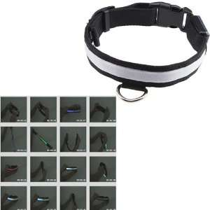 LED Illumination Pet/Dog Collar, Medium, Rainbow