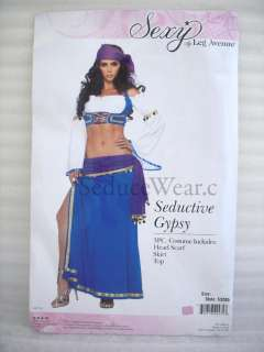 Seductive Gypsy Fortune Teller Adult Halloween Costume