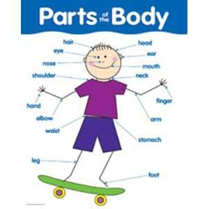 Pack CREATIVE TEACHING PRESS CHART PARTS OF THE BODY